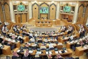 «الشورى» يطالب بتمكين «نزاهة» من الحصول على النسخ النهائية لأحكام قضايا الفساد