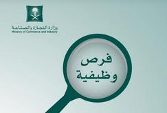 وظائف رقابية شاغرة في وزارة التجارة والصناعة