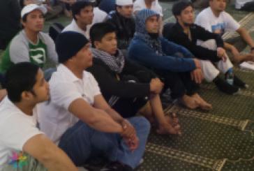 17  مسلما جديدا يوميا بدعوي الروضة خلال شهر ربيع الاول