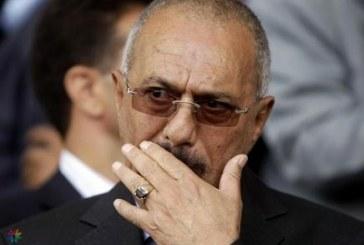 """صالح يصف الحوثيين بـ""""الأغبياء"""""""