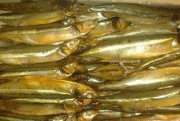 ضبط نصف طن أسماك مملحة منتهية الصلاحية بالشرقية