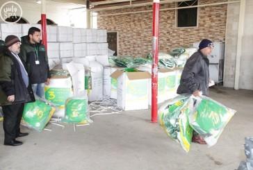 أكثر من 5600 قطعة شتوية قدمتها الحملة السعودية للاجئين السوريين في الكورة بلبنان