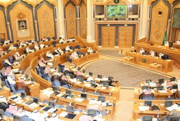 الشوري يُصوت على اتفاقيتين لاستقدام العمالة المنزلية من النيجر وجيبوتي