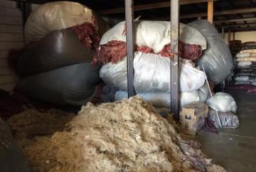 التجارة تغلق مستودعات مراتب الاسفنج الملوث في الرياض