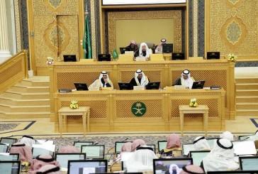 الشورى: السجن سنة لمعرض السلامة العامة للخطر