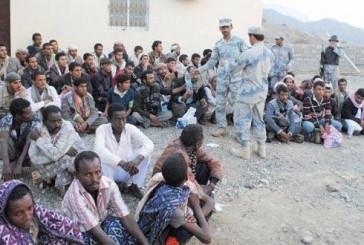 ضبط مجموعة كبيرة من المتسللين عبر الحدود الجنوبية بجازان ( فيديو )