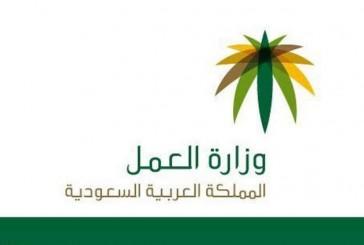 وزارة العمل تلغي 620 تأشيرة استقدام غير نظامية صدرت بتأييد حكومي