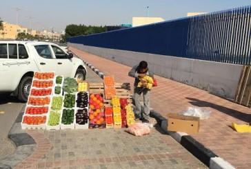 بلدية شرق الدمام تصادر 1418 كرتون فواكه وخضروات