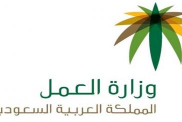"""""""العمل"""" تصدر 847 تصريح عمل مؤقت للأشقاء السوريين عبر """"أجير"""""""