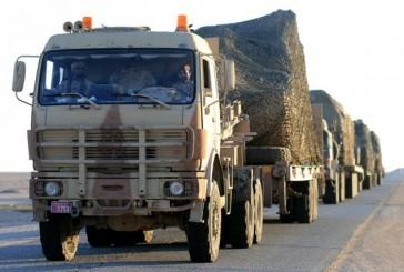 الإمارات تعلن وصول طلائع قواتها للمشاركة في «رعد الشمال»