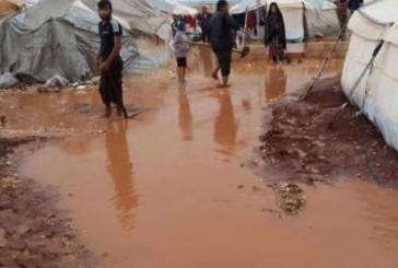 المملكة تقدم مساعدات عاجلة للمتضررين في الأنبار