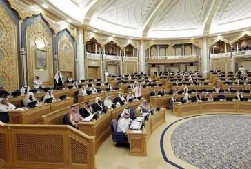 «الشورى» يوافق على تعديل مدة صلاحية جواز السفر لتكون 10 سنوات