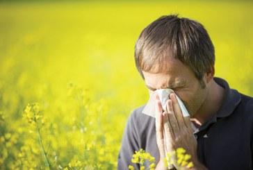 حساسية الربيع 3 توصيات لتفاديها