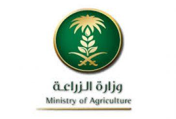 283 وظيفة في وزارة الزراعة