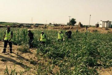 مدني جازان يواصل البحث عن شخصين فقدا في السيول