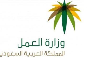 «عمل الباحة»: إنذار محال الاتصالات بسرعة التوطين وتوظيف المواطنين