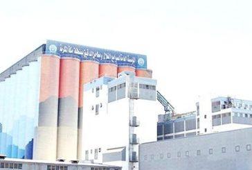 صندوق الاستثمارات يؤسس 4 شركات ويتجه لشراء 14 فرعًا لـ«الحبوب»