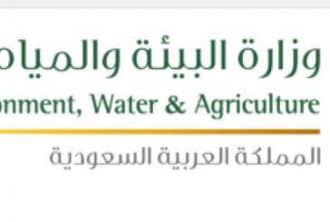 البدء في تسجيل بيانات المشتركين في مياه الباحة