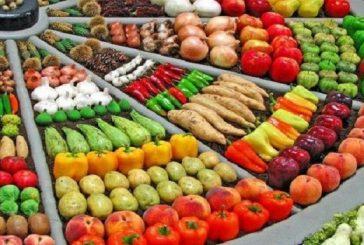"""""""الغذاء والدواء"""": الفراولة المجمدة المصرية خالية من الفيروسات"""