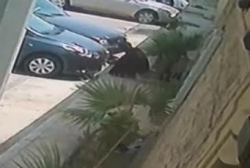 الرياض..ضبط مواطن سرق منزلاً ولوحة سيارة
