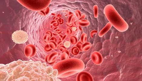 السرطان ..كيف تتفادى مرض السرطان بتدابير وقائية