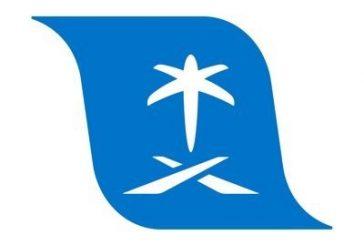 #هيئة_الطيران_المدني تصدر أول رخصة لطيار رياضي