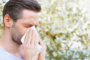 الحساسية الموسمية كيف تحاربها بالأغذية الصحية