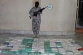 حرس الحدود يحبط تهريب (٥٢٩) كيلو جرام من الحشيش المخدر في جازان
