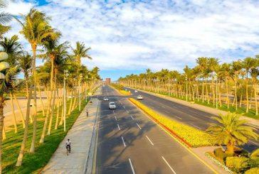 شوارع وميادين ينبع الصناعية تزدان بالأزهار الموسمية