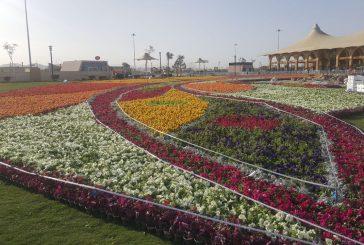 مهرجان 'ورد الطائف' يواصل فعالياته إلى 18 رجب