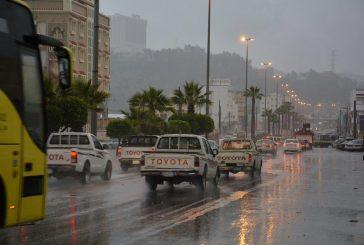 الأمطار والغيوم تعانق طبيعة بلجرشي