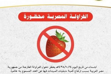 البيئة: تحظر استيراد الفراولة المصرية مؤقتاً