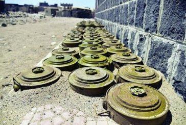 نزع 16 ألف لغم زرعها الانقلابيون حول مدينة مأرب اليمنية