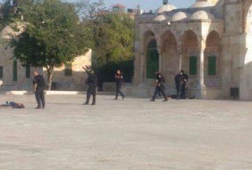 استشهاد ثلاثة فلسطينيين برصاص شرطة الاحتلال في صحن الصخرة بالقدس المحتلة