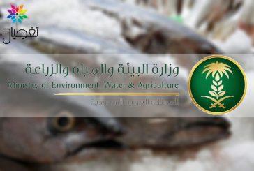 الزراعة تصدر بياناً حول إنفلونزا الطيور (H5N8) في مدينة الرياض