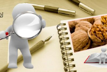 دراسة: تناول الجوز يحسن من قدرة الجهاز الهضمي