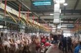 البلديات تصرح للمطابخ بذبح الأضاحي خلال أيام التشريق