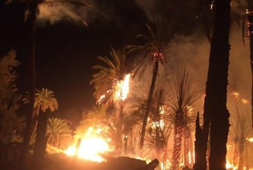مدني دومة الجندل يخمد حريق في ٦ مزارع متجاورة بحي الكبرى
