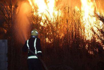 مدني #دومة_الجندل يخمد حريق في ٤ مواقع لمزارع الحبوب وحي الرحيبيين
