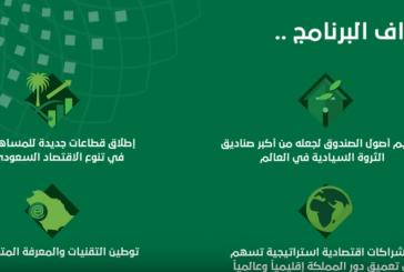 بالفيديو.. أهداف برنامج صندوق الاستثمارات العامة حتى 2020