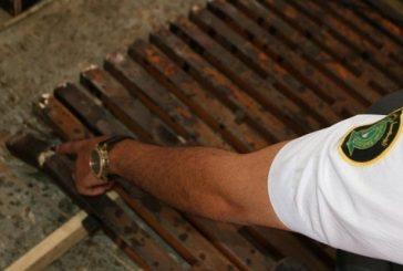 جمرك الحديثة يُحبط محاولة تهريب حوالي 700 ألف حبة كبتاغون