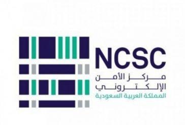 مركز الأمن الإلكتروني يرصد إعداد لحملة تصيدية جديدة