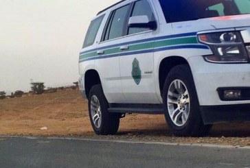 أمن الطرق يضبط أكثر من 800 حبة كبتاجون و300 حزمة من القات المخدر