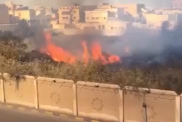 """الدفاع المدني يخمد حريق بـ""""مقبرة الجبيل"""" (فيديو)"""