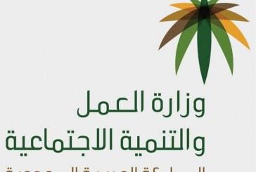 """""""هدف"""": 233 مركزًا معتمدا لضيافات الأطفال متاحة للمرأة السعودية العاملة ضمن برنامج """"قرّة"""""""