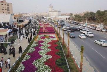 أكثر من ٣٠٠ ألف زهرة في مهرجان ألوان الربيع الثاني بعنيزة