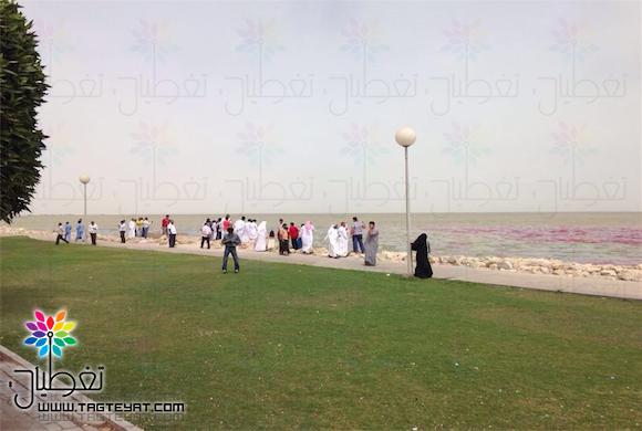 بالصور..فيمتو يغطي شاطئ سيهات